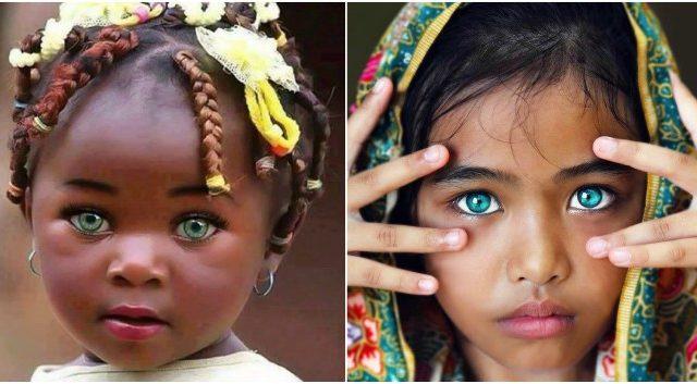 Định nghĩa Mắt biếc là gì?